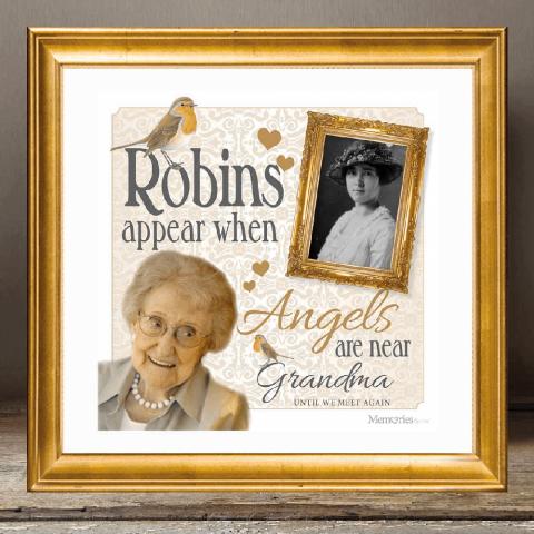 In Memory - Framed Love Robin